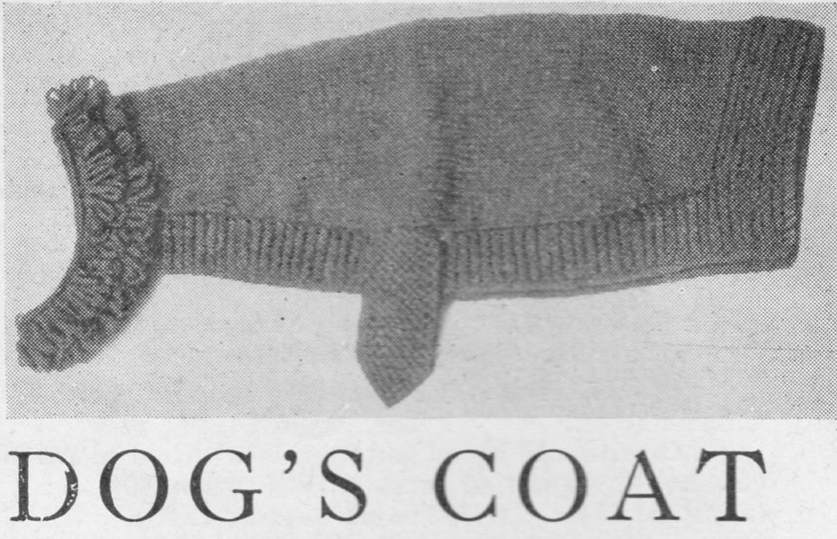 Knitting Pattern For A Greyhound Coat : Vintage Hand knitted Gift knitting patterns available from The Vintage Knitti...